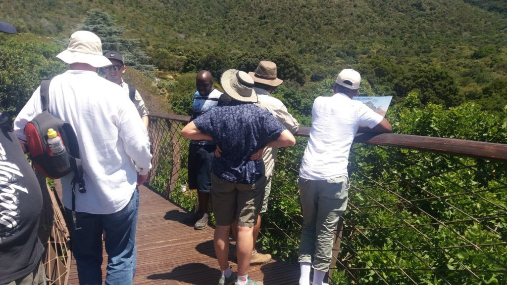 Umvoto team on the Tree Canopy Walkway at Kirstenbosch.